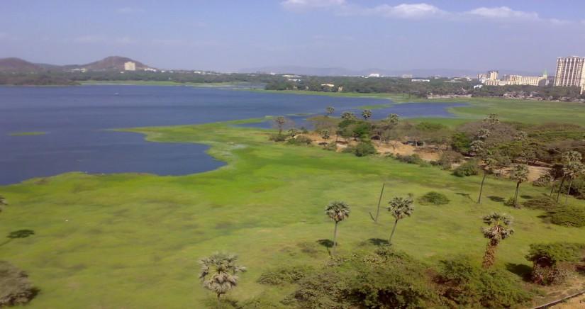 powai-lake1.jpg